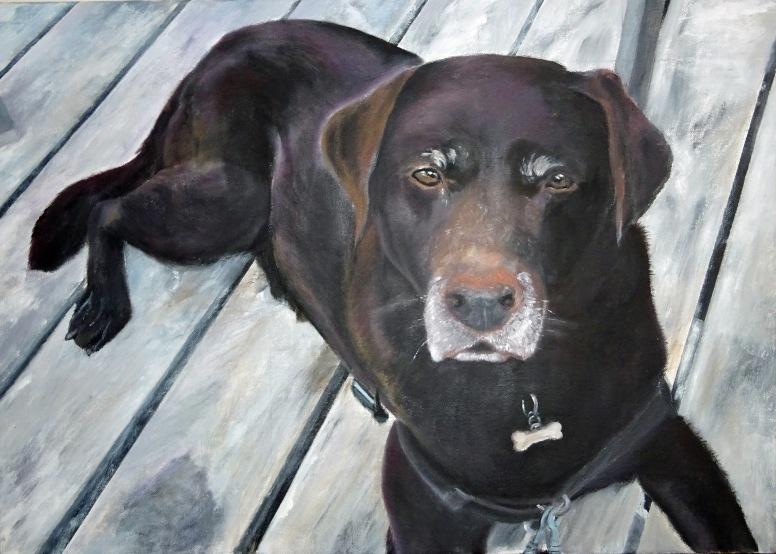 Labrador Marie
