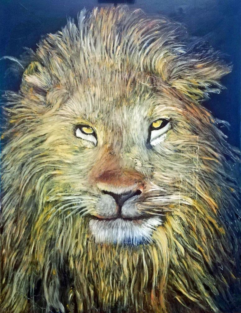 leeuw / lion